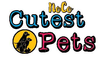 NoCO Cutest Pets Contest